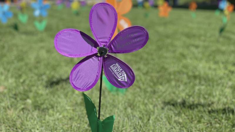 The Walk to End Alzheimer's is Saturday morning