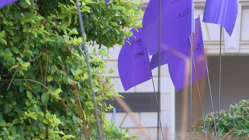 Some 105 flags were put up to remember victims of domestic violence.