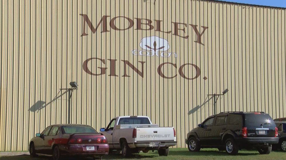 Mobley Gin Company based out of Doerun (Source: WALB)