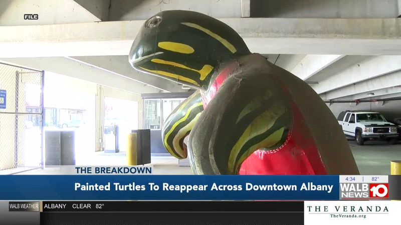 The Breakdown: Painted Turtles to Reappear Across Downtown Albany