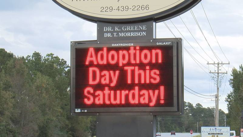 Philema Animal Hospital in Leesburg is hosting an Adoption Day on Saturday.