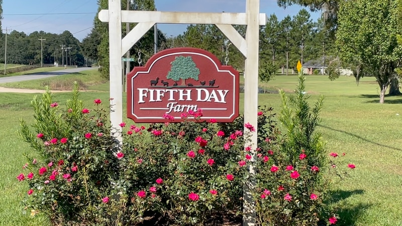 Fifth Day Farm is an agritourism destination, a place for outdoor recreation, educational...