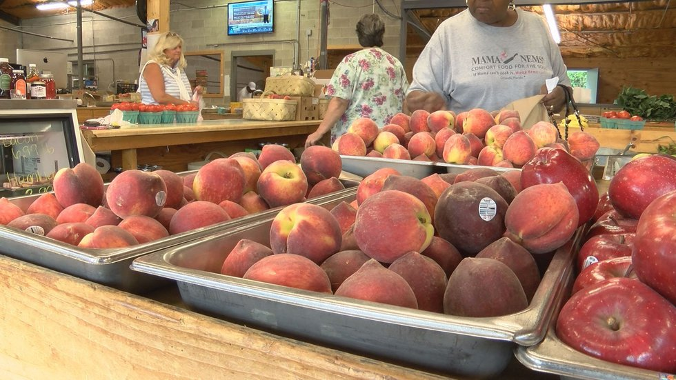 Georgia Peaches (Source: WALB)