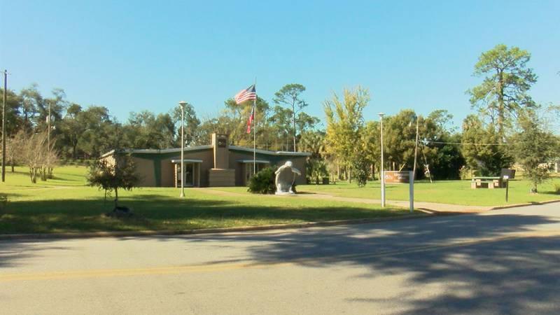 What would you like to see at Albany parks and recreational facilities?
