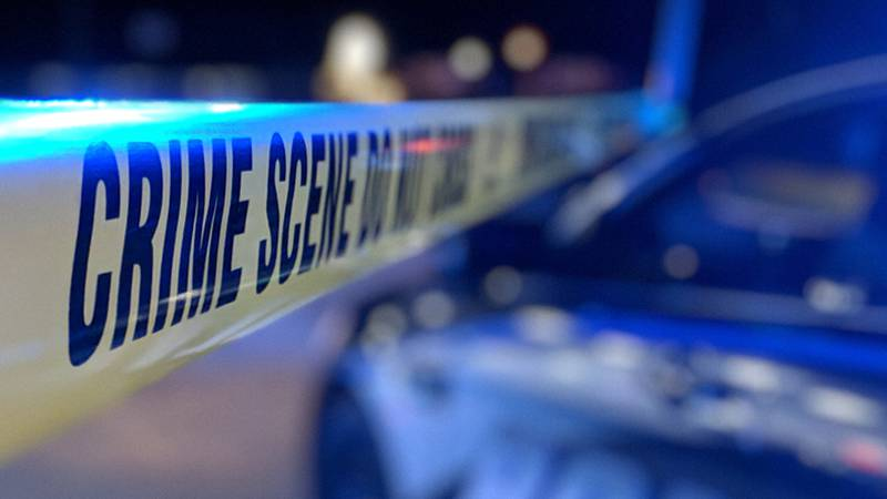 The shooting happened Wednesday night in the 5000 block of McIver drive.