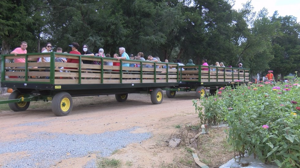 Free Hay Rides for Healthcare Workers and Military