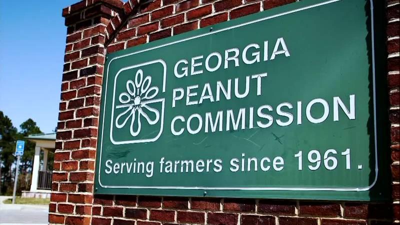 The Georgia Peanut Commission