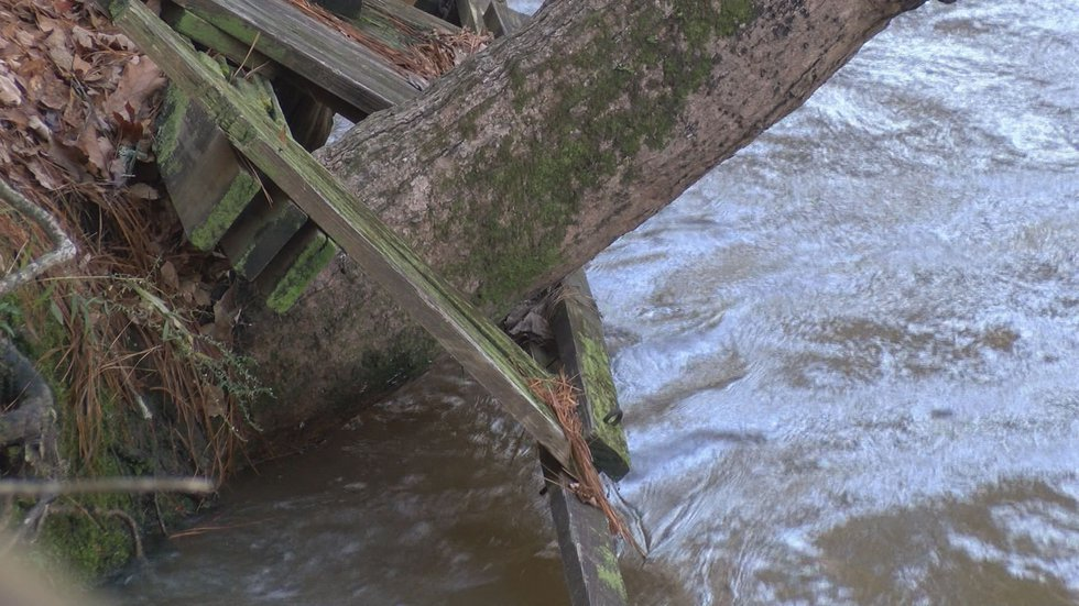 Water is in some home's yards, but not much property has been damaged so far. (Source: WALB)
